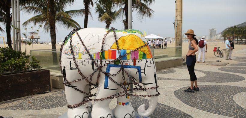 Amarula participa do Elephant Parade 2018