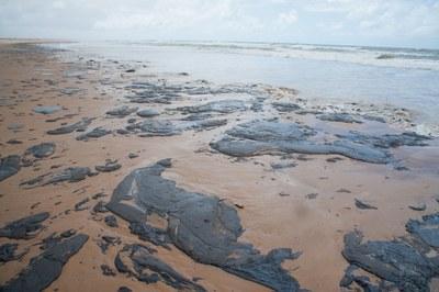 MPF pede que Justiça obrigue Governo Federal a adotar medidas urgentes para proteção do litoral sergipano | : : CidadeMarketing : :